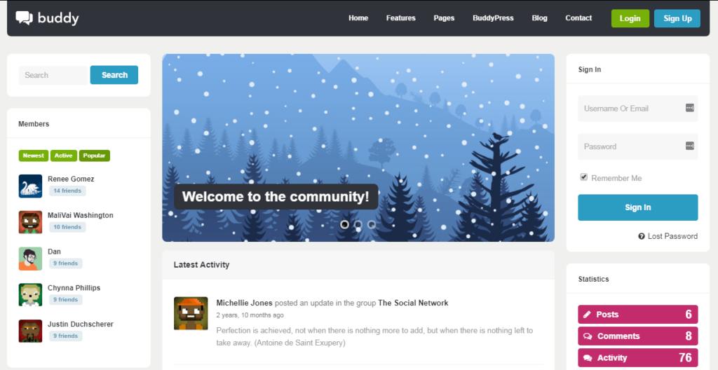 Buddy– Multi-Purpose WordPress/BuddyPress Theme