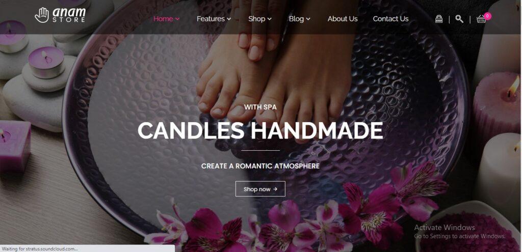 Anam - Health & Spa and Cosmetic shop WooCommerce WordPress Theme