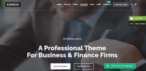 Experts theme