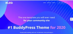 KLEO - Pro Community Focused, Multi-Purpose Buddy Press Theme