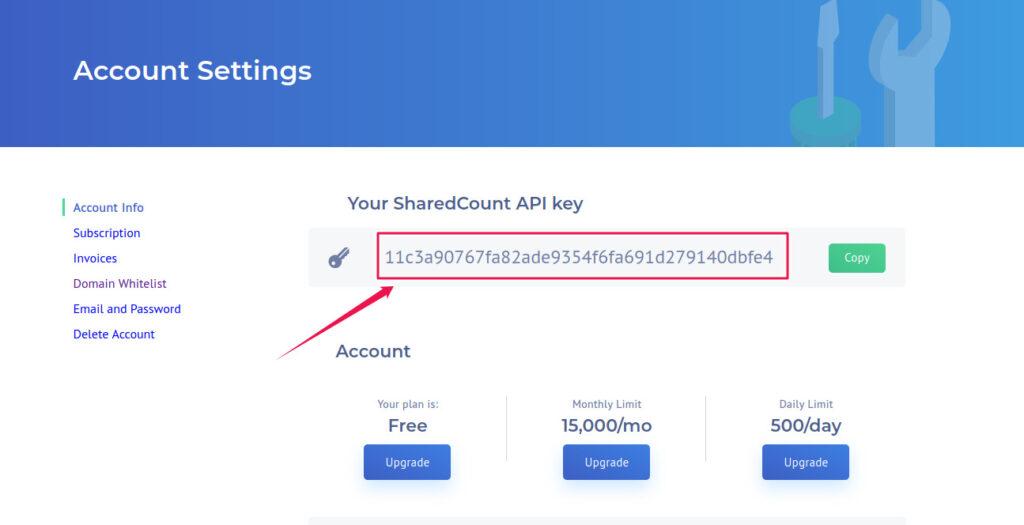 Copy API Key