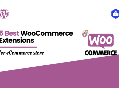 5 Best WooCommerce Extensions for eCommerce Website